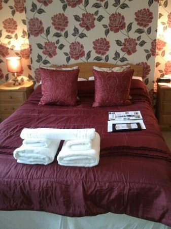 Eastfield Lodge Guesthouse:                   Jinkies...the red room...wonderful. March 2013