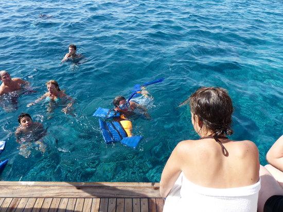 Careless Reef : Snorkel aún con el agua muy fría