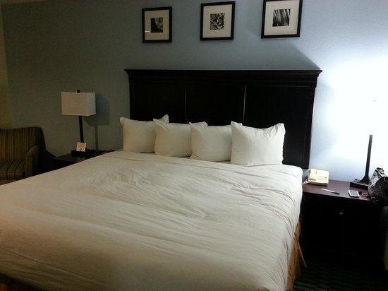 Country Inn & Suites By Carlson, Lubbock :                   Comfy King Bed!
