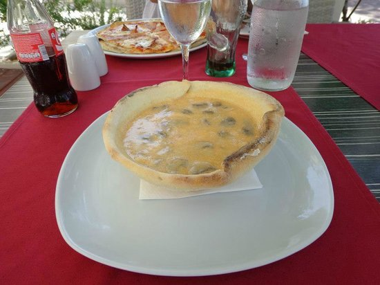 The Maritimo Hotel:                   Mushroom soup