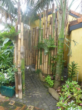 Barbara's Guesthouse: Outdoor shower