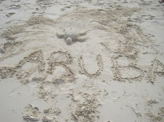 Manchebo Beach Resort & Spa:                   I love Aruba!