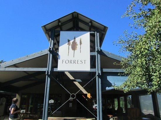 Forrest Wines Cellar Door:                   Forrest Wines
