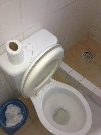 Pousada Alcobara:                   vaso sanitário rachado. Não tem porta papel higiênico no banheiro