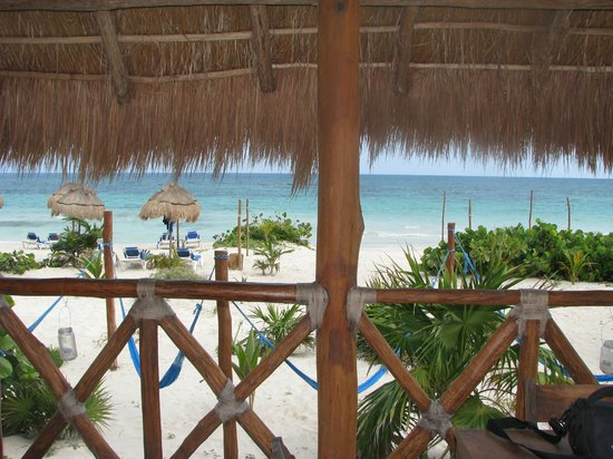 Almaplena Eco Resort & Beach Club:                   View from the beach bar/dining deck.