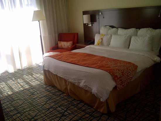 Miami Airport Marriott: King Bed