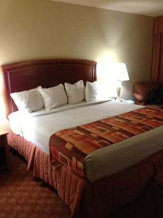 BEST WESTERN Corpus Christi:                   Room 918