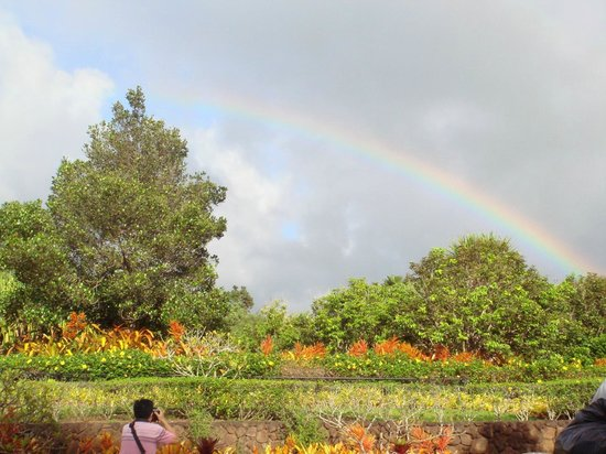 Dole Plantation:                   虹がきれいにでてました