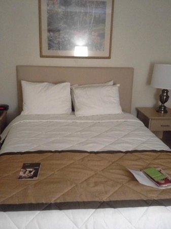 Extended Stay America - Knoxville - West Hills :                                     Bed - Queen