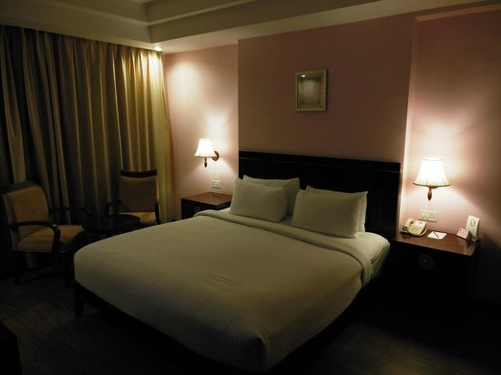 Clarks Inn Airport Hotel:                                     King Size Bed