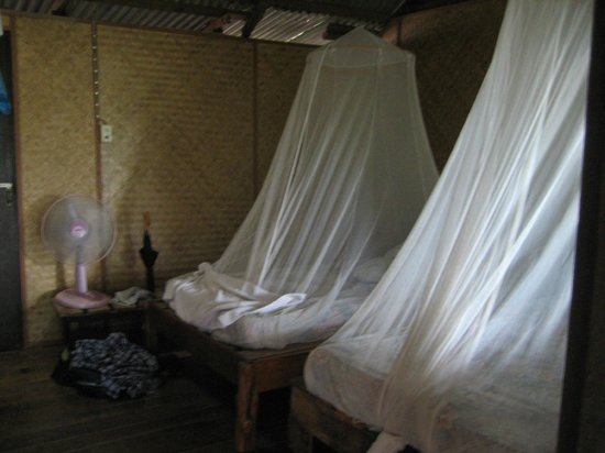 Sai Thong Resort & Spa:                   Beds with mosquito netting and room's fan.