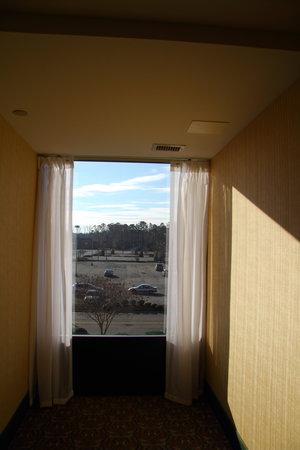 Hampton Inn Newport News-Yorktown: View from Hallway