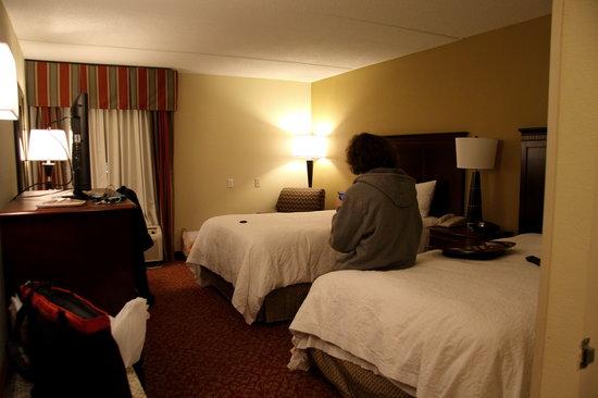 Hampton Inn Newport News-Yorktown: Room with 2 Beds