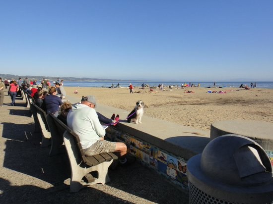 Capitola Beach :                   Пляж