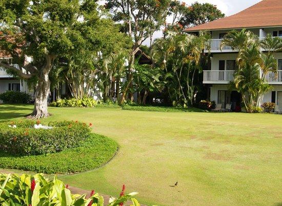 Kiahuna Plantation Resort:                   Castle Kiahuna