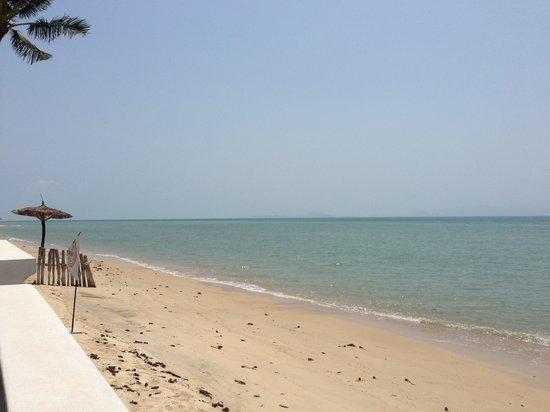 Le Divine Comedie:                                     Der Strand