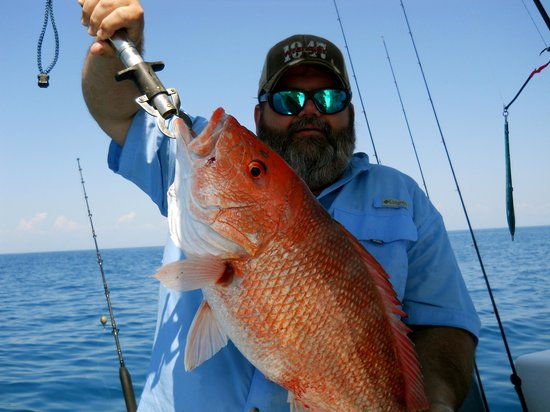 My Fishing Adventures: Deep Sea Fishing Charters In Carrabelle Florida
