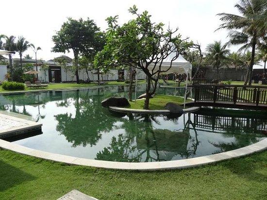 The Samaya Bali Seminyak:                   Paradise