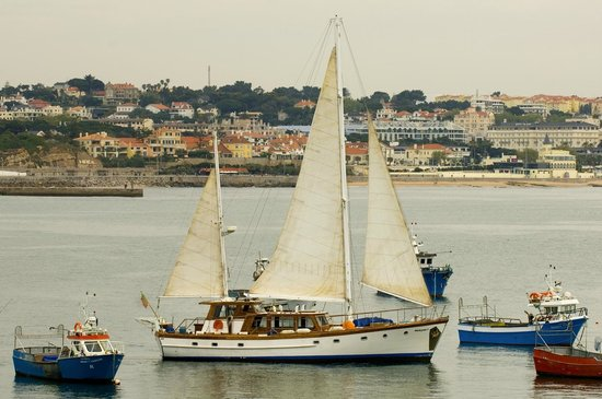 Halcyon I Lisbon Boat Tours: Halcyon I in Cascais