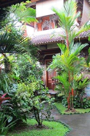 Hibiscus Cottages:                   Im Garten