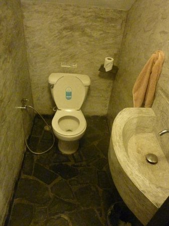 Koh Tao Heights Boutique Villas:                   Downstairs toilet.
