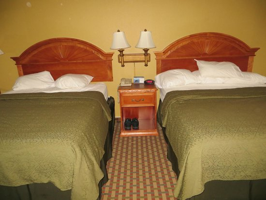 Quality Inn & Suites SeaWorld North:                   Queen beds