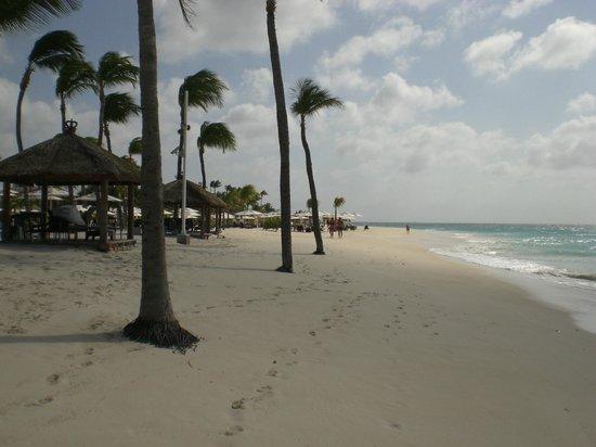 Bucuti & Tara Beach Resort Aruba:                   Strand