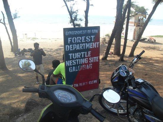 Sign for Galjibaga Beach (Turtle Beach)