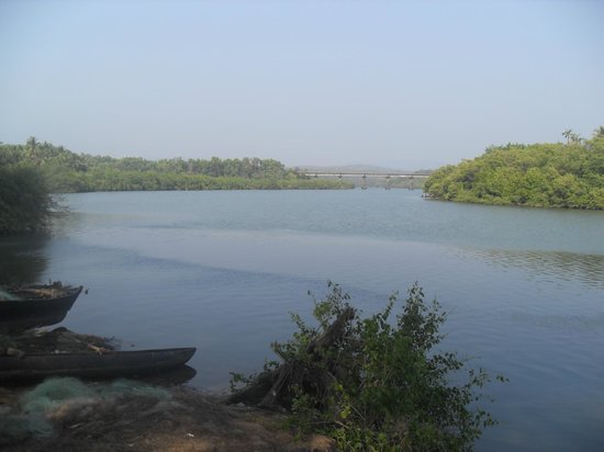 River at rear of Galjibaga Beach (Turtle Beach)