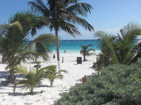 Cabanas Zazilkin:                                     direkter strand vom zazilkin