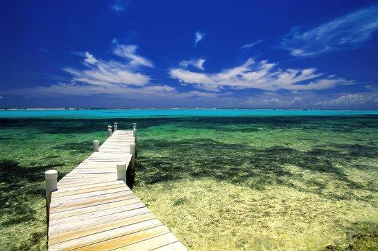 자메이카 사진