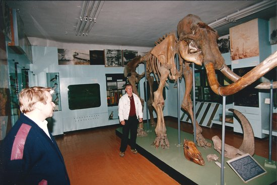 Mammoth Skeleton in the Yakutsk Mammoth Museum