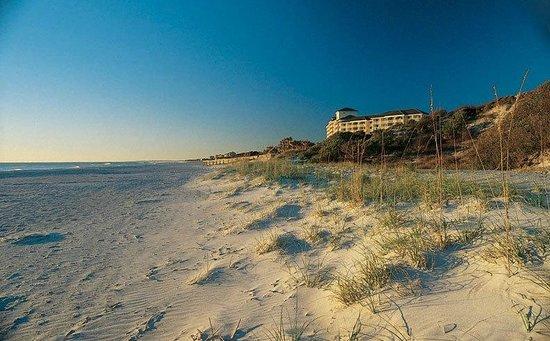 Isla de Amelia, FL:                   beach