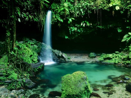 Dominica:                   waterfall