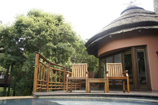 Thanda Safari:                                     Another angle from my pool