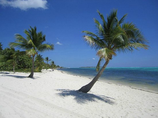 Little Cayman:                   beach