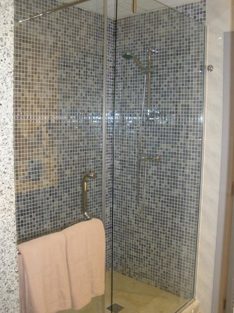 Hotel Riu Nautilus:                   Shower