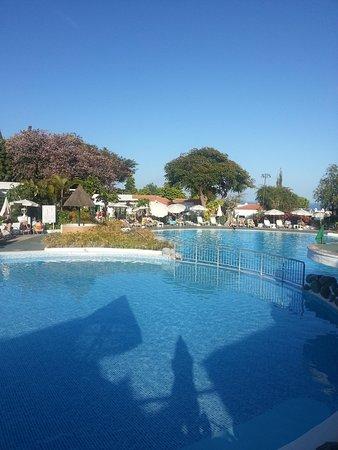 Hotel Jardin Tecina:                   Garfin Tecina