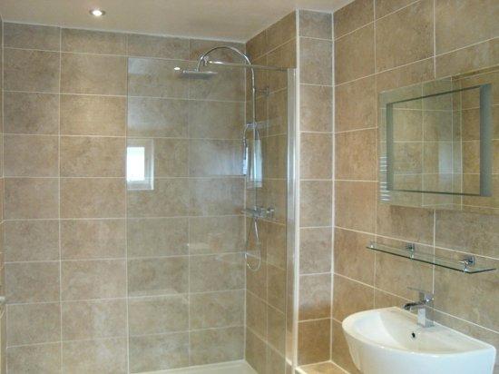 ثري ويلز هوتل: Room 16 bathroom