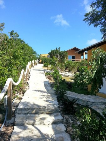Shannas Cove Resort:                   the way up to the restaurant from Turtle