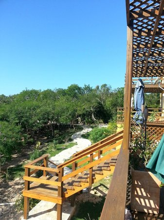 Shannas Cove Resort:                   the walkway to the breakfast area