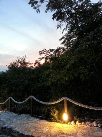 Shannas Cove Resort:                   night at Shanna's