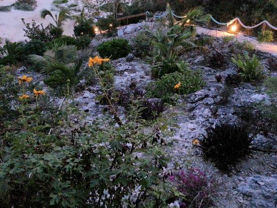 Shannas Cove Resort:                   spectacular stone garden
