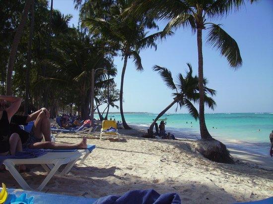 Vista Sol Punta Cana :                   plage
