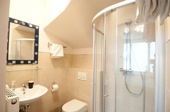 Inn Brugas: Standard Room bath room
