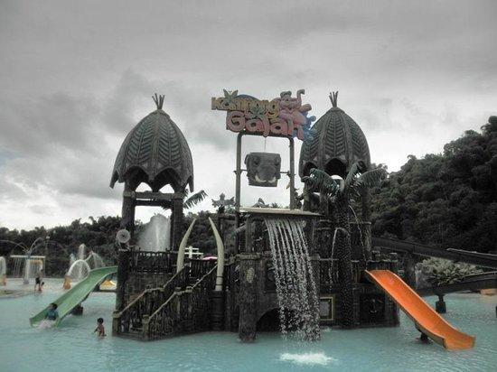 Elephant Village : water park pool