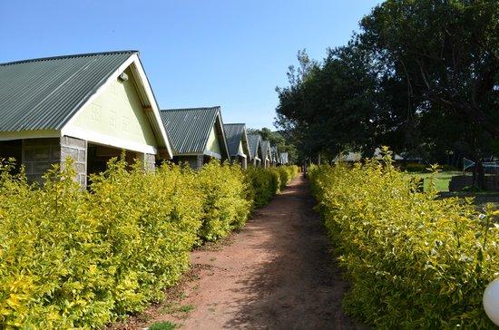 Rhino Tourist Camp:                                     Our camp