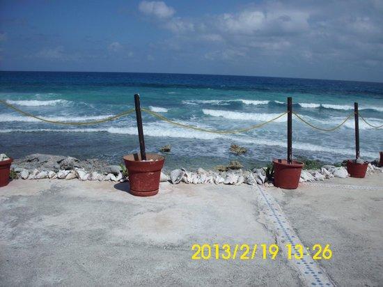 Luna d'Miel :                   patio view