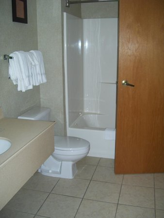 Comfort Suites South Burlington: bathroom
