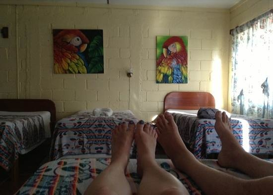 The Orange Guesthouse :                   Comfort after a long day climbing Mayan ruins:)